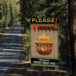 Smokey Bear Billboard